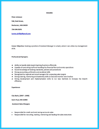 Sample Resume For Credit Manager DissertationThesis Editing Jacobs Writing Services Credit And 22