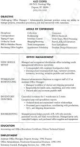 Executive Resume Templates Word Interesting Example Management Resume Sample Project Manager Resume Example