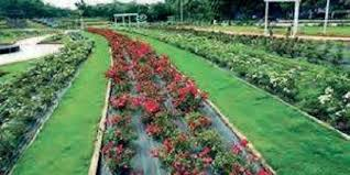 the event was organized by the indian green building council and recognised hyderabad s botanical gardens with a gold rating photo eps
