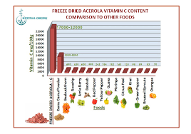 Fruit Comparison Chart Food Vitamin C Comparison Natural Origins Sa