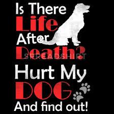 Hund Tod Hunde Verletzung Spruch Geschenk Snapback Cap Spreadshirt