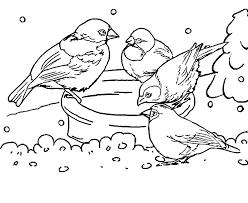 Het Molenschip Most Honger In De Tuinsos Tuinvogels