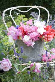 Small Picture 8 of the best garden flowers for cutting and arranging