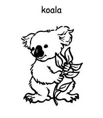 Small Picture Top 71 Koala Coloring Pages Free Coloring Page