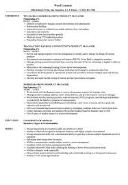 Resume Product Manager Banking Resume Samples Velvet Jobs Examples