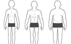 Female Body Types Chart Your Body Type Ectomorph Mesomorph Or Endomorph Muscle