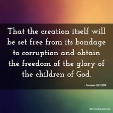 Bible verse freedom from bondage
