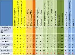 Spectrum Of Commonly Used Antibiotics