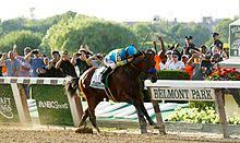 2015 Belmont Stakes Chart 2015 Belmont Stakes Wikipedia