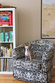 Apartment Therapy Tips: Living in a Small Space with Pets