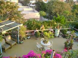 Small Picture Picture of Rooftop Garden Designed by Muslim Raza YouTube