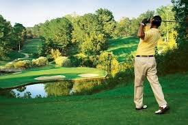 Image result for golf club images