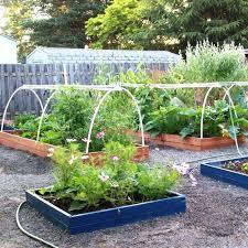 small veggie garden ideas backyard vegetable garden ideas small