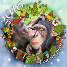 Предновогоднее поздравление с годом обезьяны