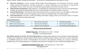 One Page Resume Examples Page Resume Examples One Page Resume ...