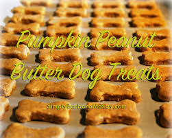 Gifts From The Kitchen Homemade Pumpkin Peanut Butter Dog Treats Simply The Best From
