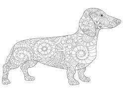 Dachshund Coloring Pages Astonishing Book Line Drawing Free