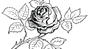Bouquet Of Flowers Coloring Page Rose Flower Coloring Page Flower