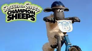 Xe đạp mạo hiểm BMX   Championsheeps   Những Chú Cừu Thông Minh [Shaun the  Sheep] - YouTube