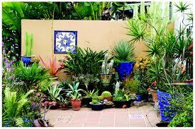 Garden Design Garden Design With Succulent Garden Home Design Succulent Container Garden Plans
