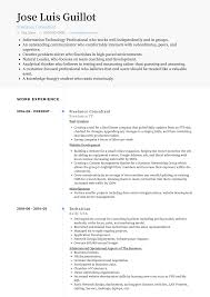 Oracle Apps Technical Consultant Resume Samples Sample It Cv