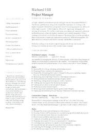 Project Manager Resume Summary Custom Project Manager Resume Summary Statement Examples Fruityidea Resume
