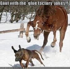 For a Laugh...A Redneck Joke Images?q=tbn:ANd9GcR3xRzDm5GXV30aL_GLJxLg50uwgLQhlHta8wJnTpKfsnQmNN7_