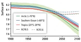 Three Tools To Solve The Mystery Of Ocean Acidity Climate