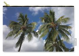 Palm Trees Carry-all Pouch for Sale by Petra Smith