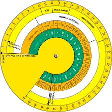 Pregnancy Wheel Calculating Due Date With Pregnancy Wheel