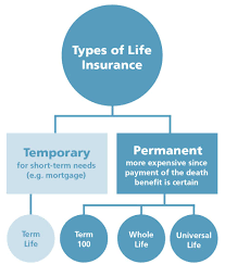 4 myth i m too young to worry about life insurance