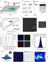 Confocal Reference Free Traction Force Microscopy Nature