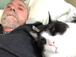 Image result for paul krugman cat