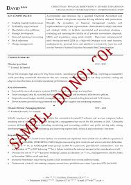 21 Fresh Gallery Of Executive Summary Resume Template Cover Letter