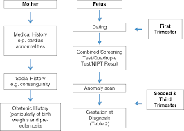 Differential Diagnosis Of Fetal Growth Restriction Chapter