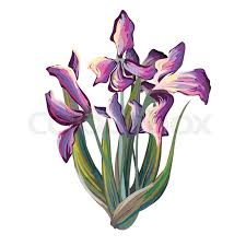iris bouquet in van gogh painting style violet and blue flowers with leaves hand drawn with brushed lines and dots vector ilration