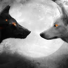 white wolf wallpaper. Fine Wolf Black And White Wolf Wallpaper Engine With L
