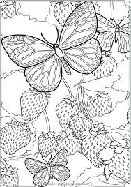 Small Picture Complex Butterfly Coloring Pages Coloring Site Complex Butterfly