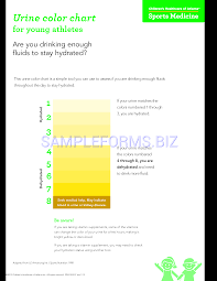 Preview Pdf Urine Color Chart For Young Athletes 1