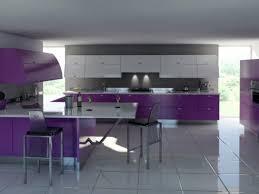 kitchen design purple and white. kitchenpurple kitchen appliances and 23 modern design with ceramic tile flooring purple white