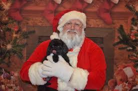 Index of /santa/christmas13/Wendy Chambers/2012-03-16 001