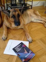 science fiction essay topics writing an academic dissertation is science fiction essay topics jpg