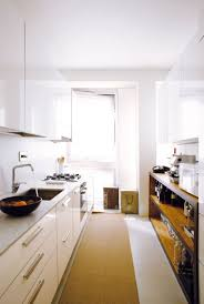 Small Modern Kitchen Stylish Doria By Fabio Fantolino Sports Sophisticated Minimalism