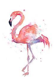 flamingo watercolor painting flamingo