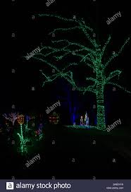 Meadowlark Gardens Winter Walk Of Lights Christmas Carolers In Colorful Lights Under A Large Tree
