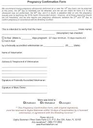 Printable Proof Of Pregnancy Form Fake Medical Forms Free Papers ...