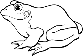 Small Picture Free Frog Coloring Pages
