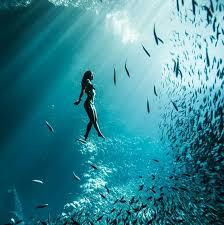 Pin Uživatele P H Na Nástěnce Photo Potápění Voda A Příroda