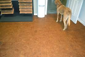 best floors for pets meze