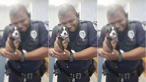 Animal Cop Cop Responds To A Call At An Animal Shelter Leaves With A Puppy